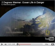 Ocean Life in Danger