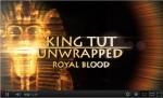 King Tut Unwrapped - King Tut's DNA | Royal Blood