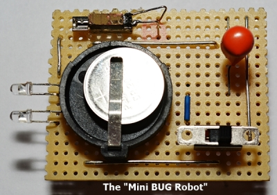 The Mini BUG Robot